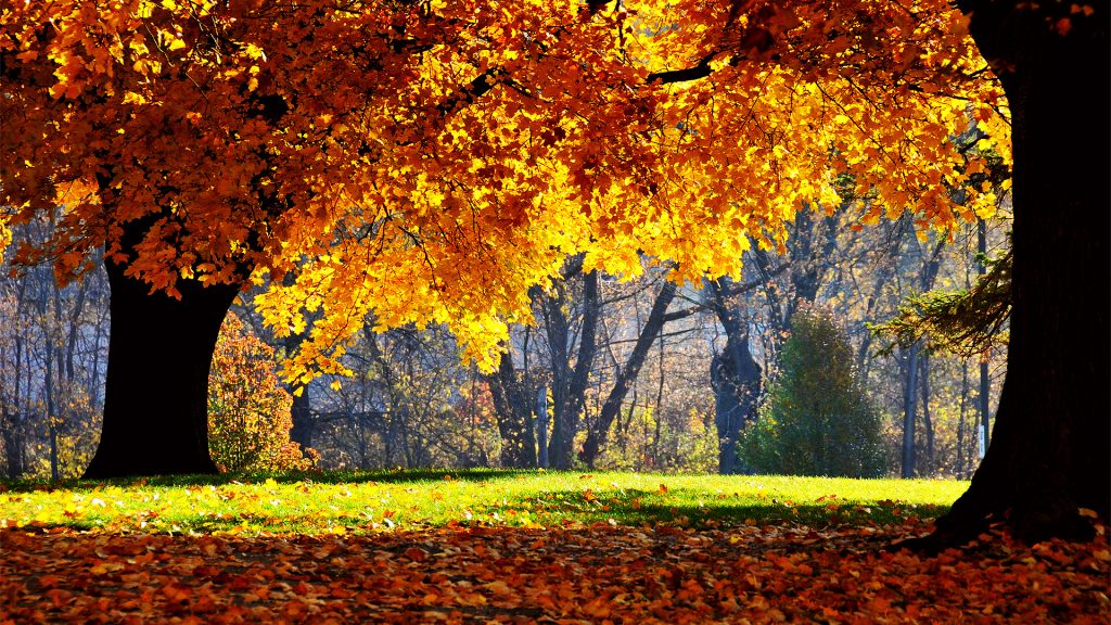 Best places to travel during fall season travel for Best fall destinations in the us